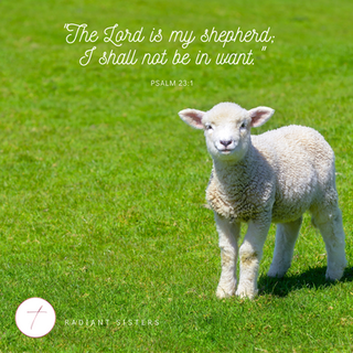 """The Lord is my shepherd; I shall not be in want."" (Psalm 23:1)"