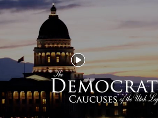 Democratic response to State of the State