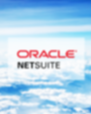 NETSUITE 2.png