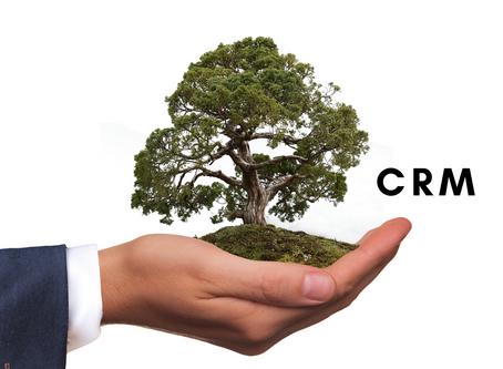 NetSuite CRM: la piattaforma in cloud per le PMI