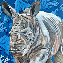 Jimmy - White Rhino- Wall Flower Series