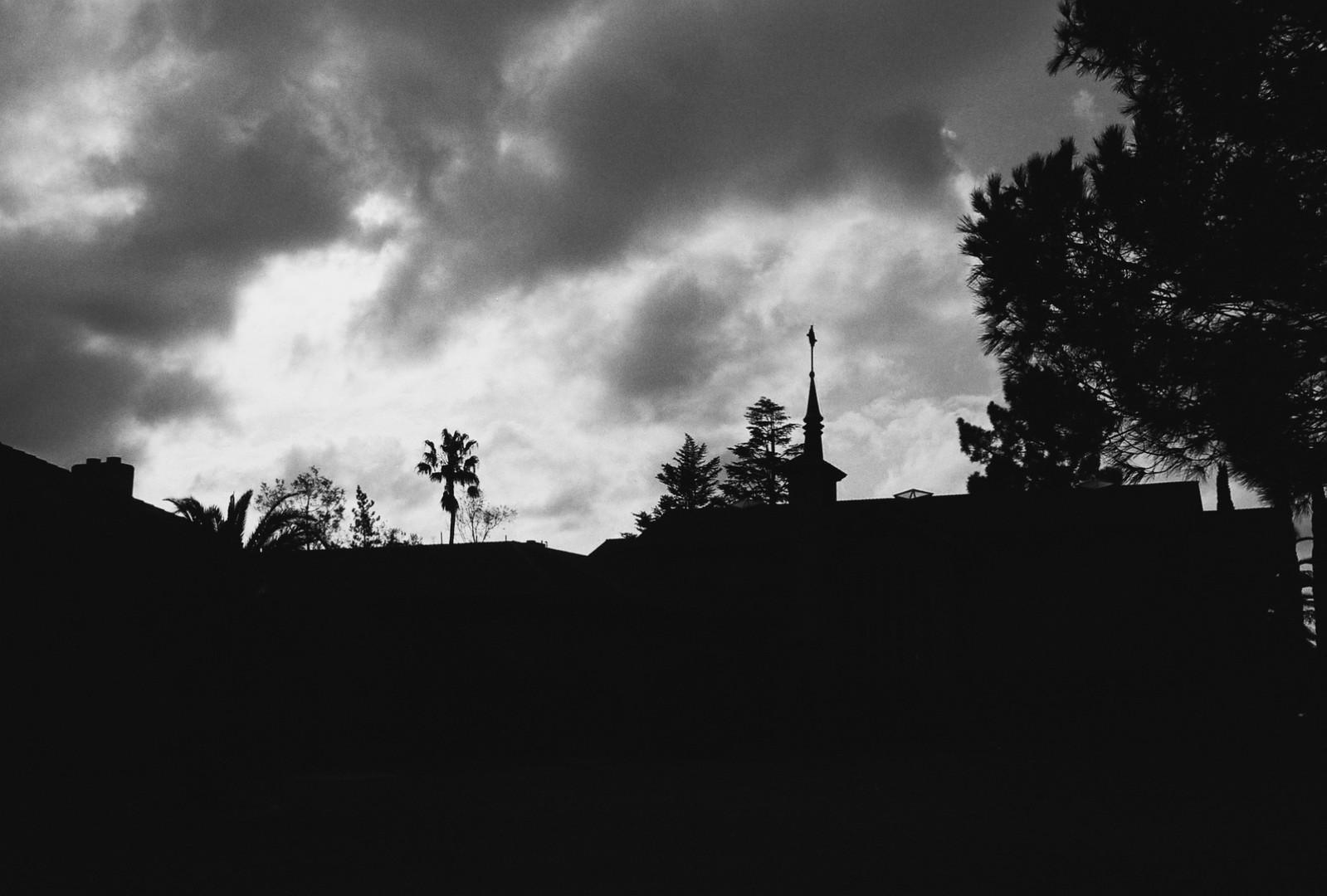 MSJ Silhouette.jpg