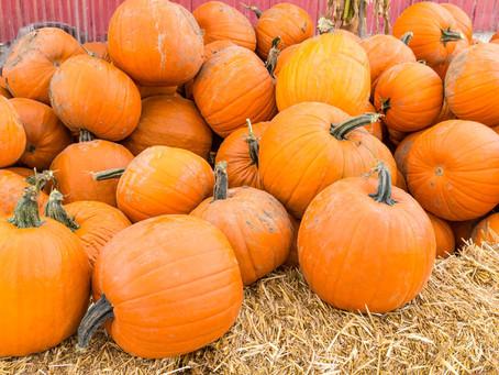 9 Great October Activities in Austin