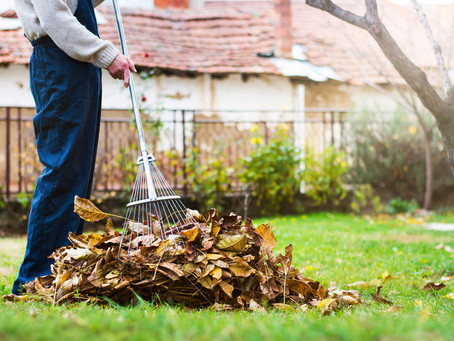13 Fall Home Maintenance Ideas