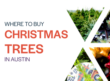 Where to Buy Christmas Trees in Austin