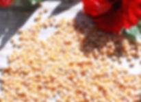 kernels.jpg