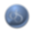 logo DS final.png