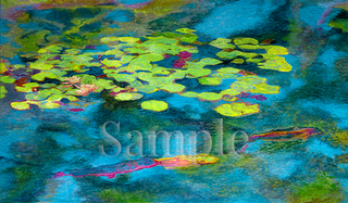Water Lillies & Koi