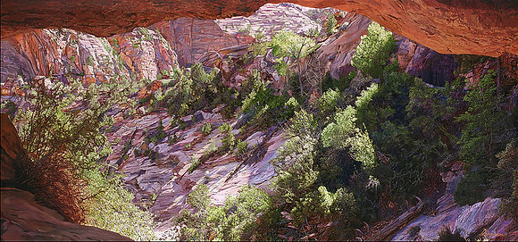 "Canyon View 28""x60"""