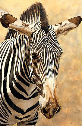 """Zebra 21""""x30"""""""