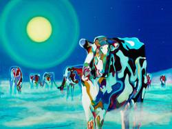 Moon-Cows
