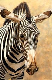 Reduced Size_Zebra.jpg
