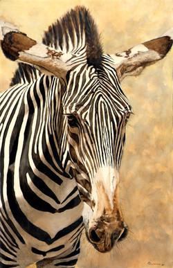 Reduced Size_Zebra
