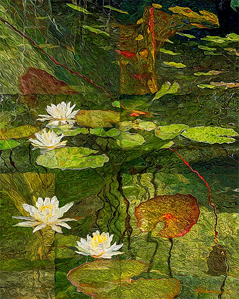 "Water Lillies - 24""x30"""