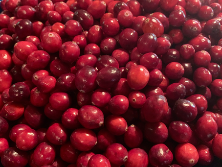 Healing Benefits of Cranberries