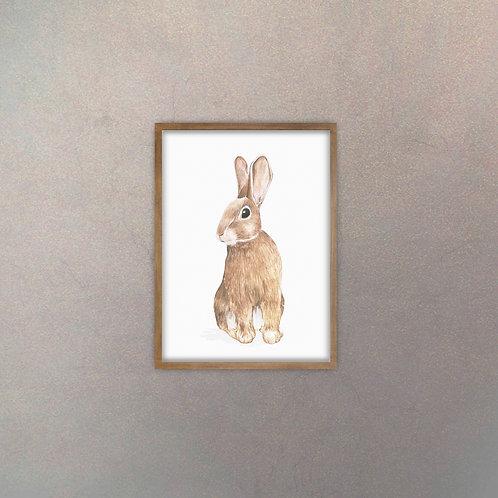 Conejo Infantil I