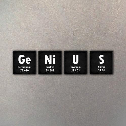 Set Genius (4 Cuadros)