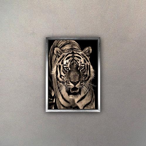 Tigre II (Canvas)