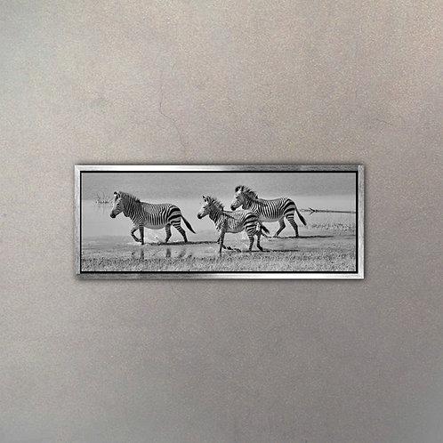 Cebras Panorámica I (Canvas)