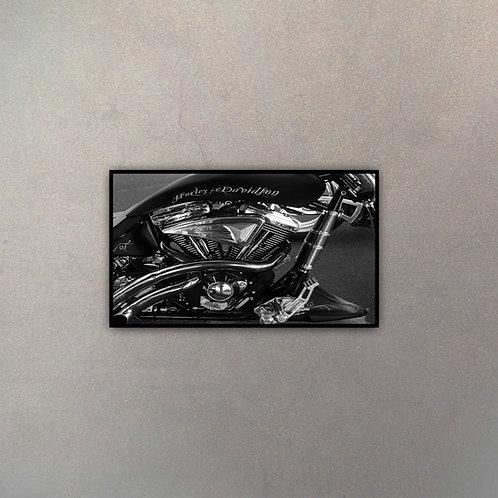 Perfíl Moto Harley IV