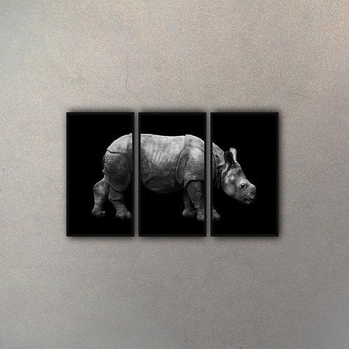 Tríptico Rinoceronte (3 Cuadros)