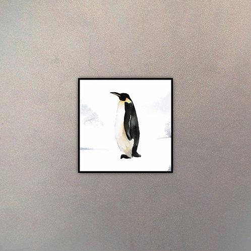 Pingüino Infantil I