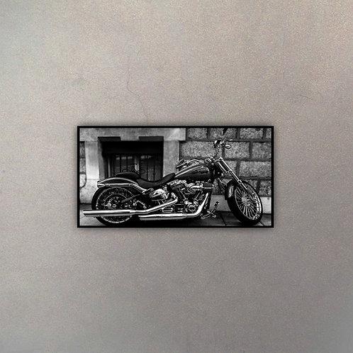 Perfil Moto Harley VII