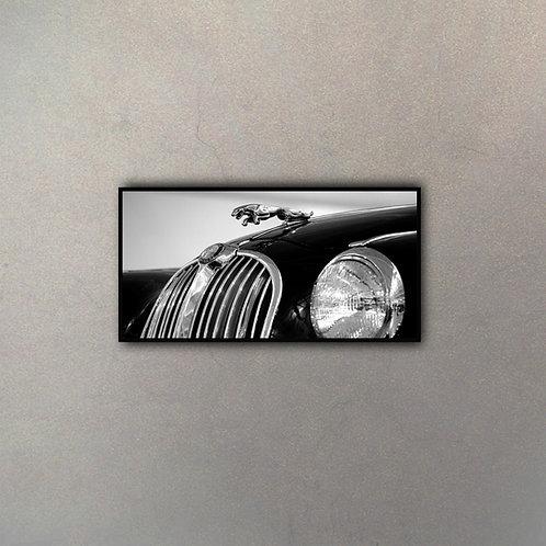 Auto De Lujo I