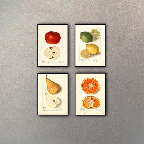 Combo Frutas (4 Cuadros)