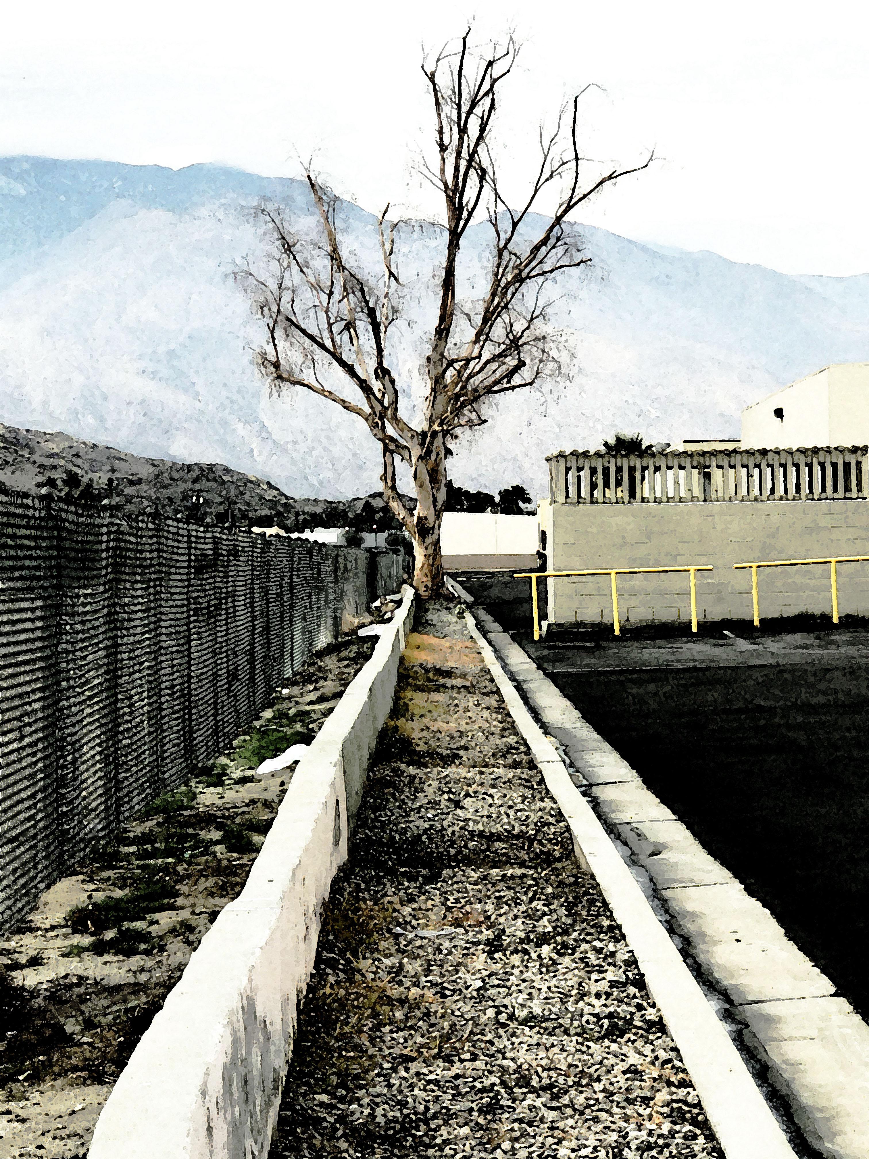 Perez Road1