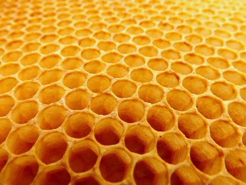 Honeycomb Networks