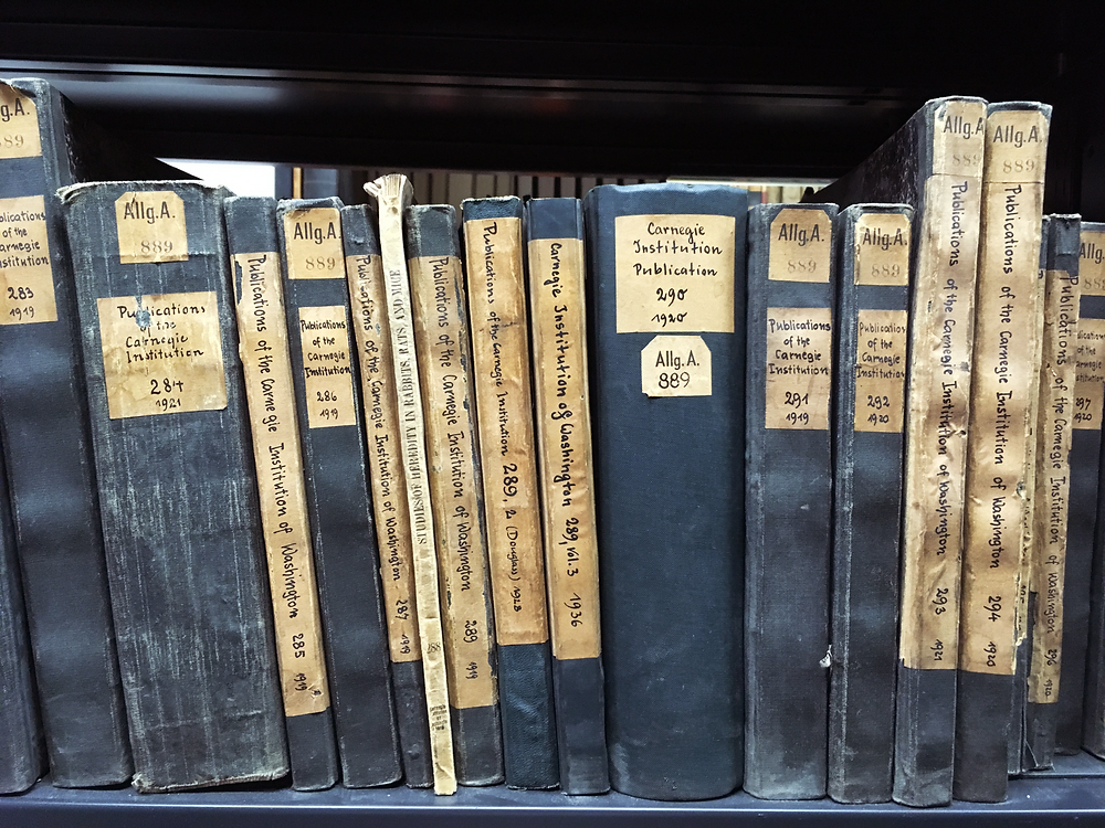 20世紀初頭の資料も手にとって閲覧可能