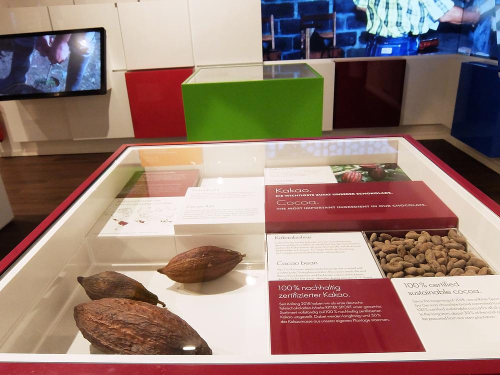 チョコレートについての小さな展示スペース