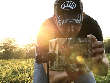 Are you checking Trail Cameras too often?