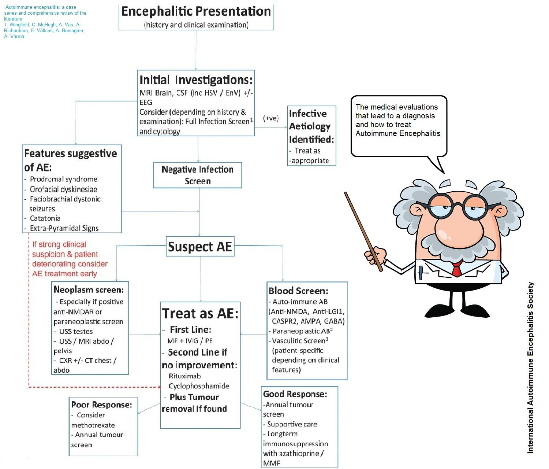 Diagnosis And Treatment Autoimmune Encephalitis
