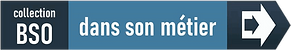 BSO_dans_son_métier_p.png