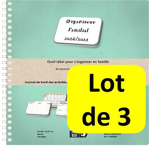 Lot de 3 Organiseurs Agenda Familial 2020-2021 21x21cm spirale 160 pages