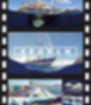 02_Karibikvideo_Banner.jpg