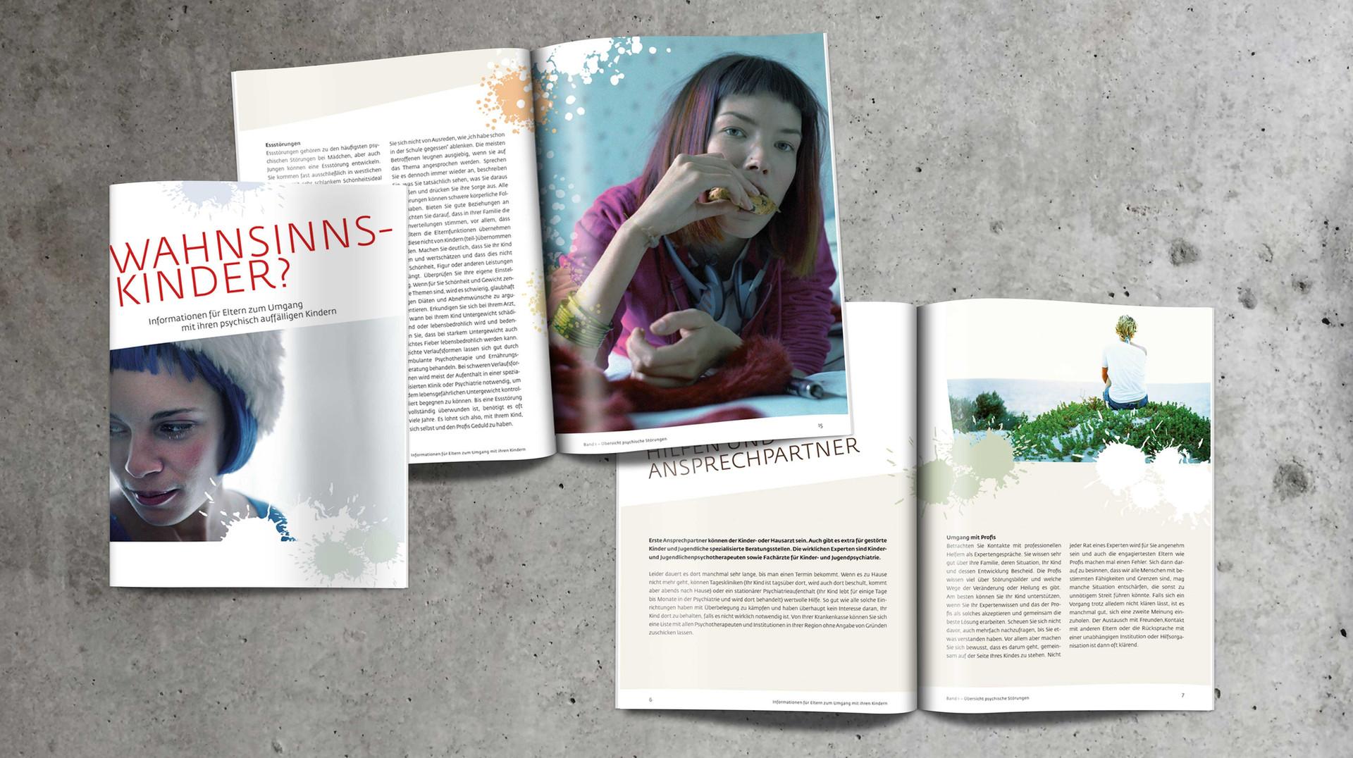 Polarlicht Broschur