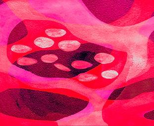 Blutsupp-vomChef2.jpg