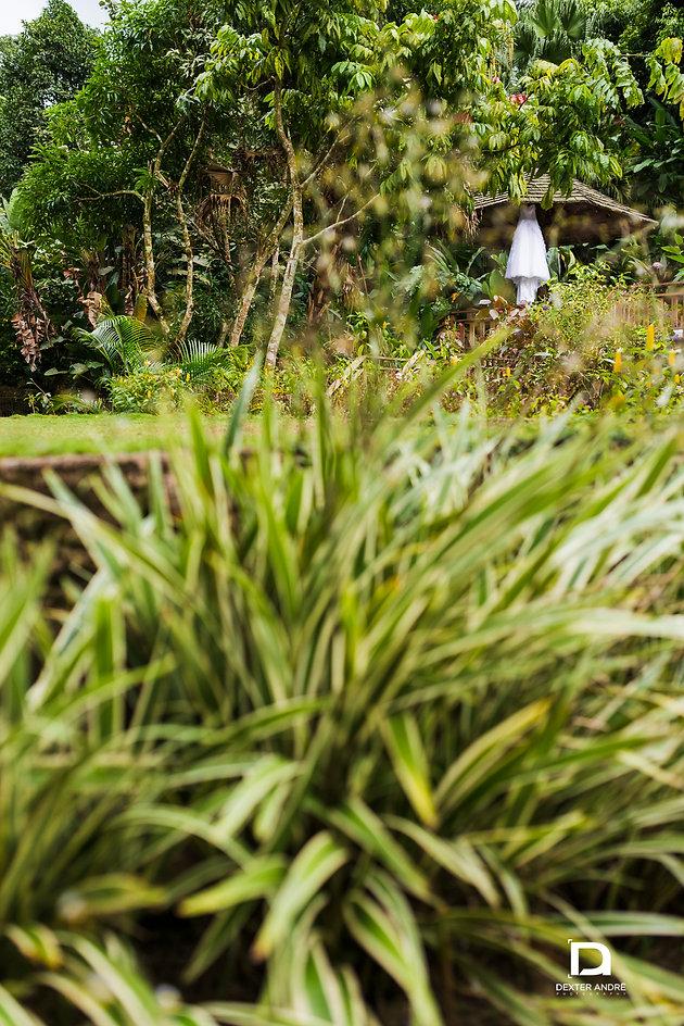 Struan Castle Gardens- The Gregory's (Jamaican Wedding