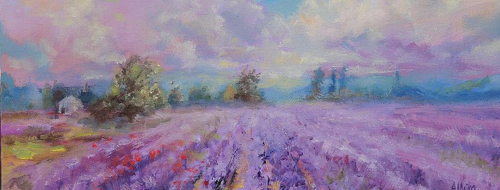 """Lavender Field"""