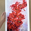 """Thumbnail: """"Red Poppies"""" Limited Edition Print"""