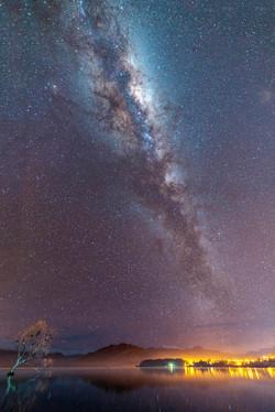 Night Sky At Wanaka Tree