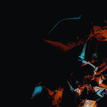 14 agos-03-2_edited.jpg