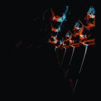 14 agos-01.jpg
