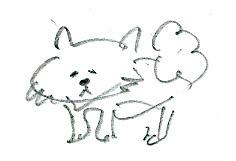 台湾スケッチ4 ほっぽの子犬 / P132