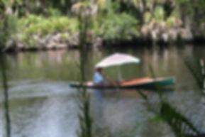 Myakka River, Sarasota, Florida