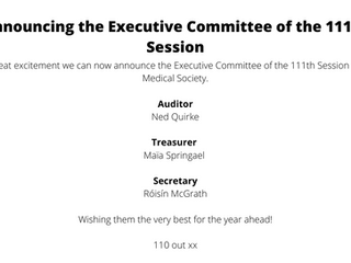 Announcement of the Executive Committee of the 111th Session
