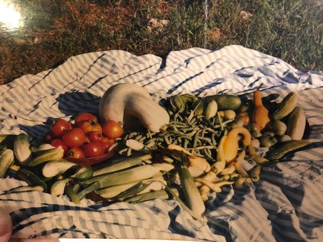 Ruth's 4-H garden haul